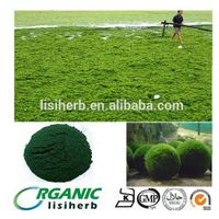 100% pure organic chlorella powder healthcare supplement