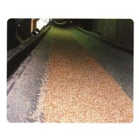 OIL-RESISTANT EP CONVEYOR BELT
