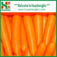 2019 Chinese Fresh Carrots from factory