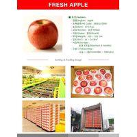 Presh Fruits - Apple thumbnail image
