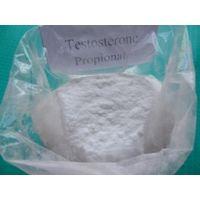 Testosterone Propionate CAS 57-85-2 thumbnail image