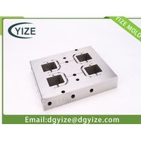 Dongguan precision mold component-precision inserts with EDM processing thumbnail image