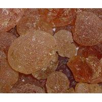 Acacia Senegal thumbnail image