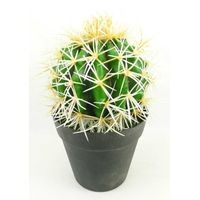 Faux cactus in black pot