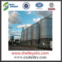 1000 ton paddy grain silo for farm