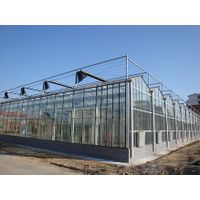 the glass greenhouse thumbnail image