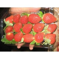 Strawberry thumbnail image