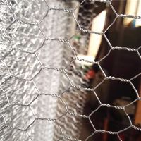 Security and Stability Galvanized Hexagonal Wire Mesh