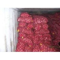 Onion, Bangalore Rose Onion, Bellary Onion wholesaler