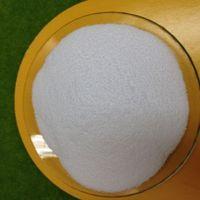 Chlorinated Polyethylene Resin (CPVC) thumbnail image