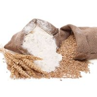 Sell Wheat flour premium (top, highest, high quality) grade/class