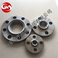 Zhangqiu API Stainless Large Diameter Forging Flange (300-6500mm)