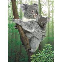 Special lifelive 3d lenticular poster of koala