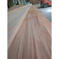 Cheap price Natural plb face veneer for plywood