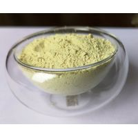 Rutin95%-Natural Sophora Japonica Extract-NF11 thumbnail image