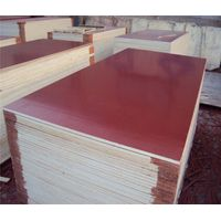 Hot Sales Film Faced Plywood for Construction Concrete Formwork