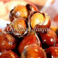 china organic sweet chestnuts