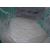 Big Discount Hot Sale Testosterone Enanthate CAS 315-37-7