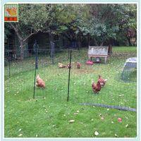 poultry plastic netting thumbnail image
