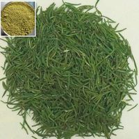 Top quality herbal product additive green tea extract powder thumbnail image