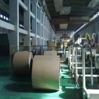 Single Sided PE Coated Paper
