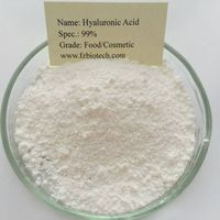 Bulk and Wholesale Hyaluronic Acid 99%,Hyaluronic Acid Powder,Hyaluronic Acid powder