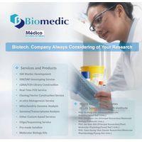 Molecular marker development and sequencing analysis
