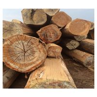 Wood Logs (Beech, Oak, Acacia, Spruce, Pine, Ash) thumbnail image