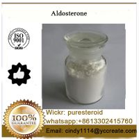 99% Purity Aldosterone White Powder With Best Offer