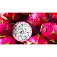 Dragon Fruit From Vietnam-Famous for best quality