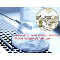 Hyaluronic Acid/ Sodium Hyaluronate (Cosmetic Grade)