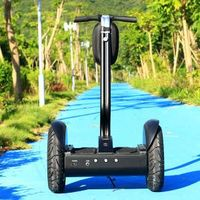 CE/ROHS/FCC Approved 2000W Motor China Self Balancing 2 Wheel Electric Scooter