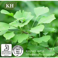 Ginkgo Biloba Extract;24% Ginkgo flavone glycosides; 6% Terpene Lactones thumbnail image