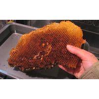 PURE BEE WAX(100% natural bee wax)