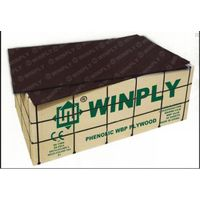 WINPLY film faced plywood from China thumbnail image