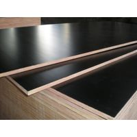 Hot selling Marine Plywood Marine Plywood for wholesales