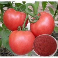 Lycopene 5%, 10% (Tomato Extract) thumbnail image