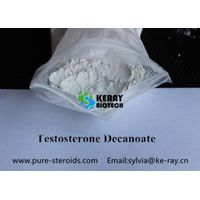 TEST DECA Testosterone Steroid Hormone Powder Testosterone Decanoate CAS 5721-91-5 muscle growth