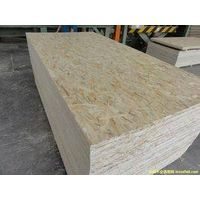 Oriented Strand Board(OSB)