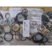 www.fuelinjection-parts.com hot sell Repair kit