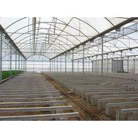 Changsha Jin Yang Technology Co , Ltd - Greenhouse, Film, Cloth