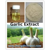 Garlic Extract/Allicin 1%/ Odorless garlic oil