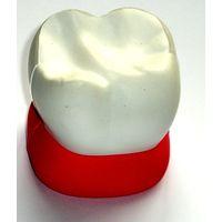 Sponge tooth