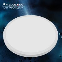 Zuolang wall ceiling surface mounted round panel light