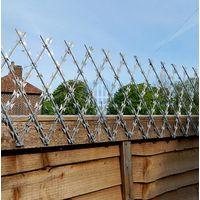 Welded Razor Wire Mesh Fence thumbnail image
