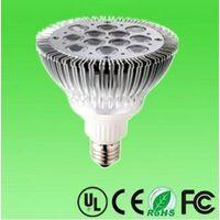 24W LED PAR38 Spotlight 12*2W CREE/Semi/Edison LED spotlight