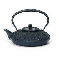cast iron teapot tetsubin