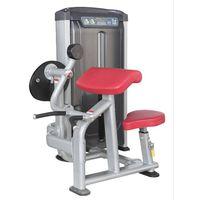 Fitness Equipment For Seniors Biceps Exercise