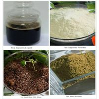 Tea Saponin/Tea Seed Powder