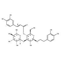 Reserach and Lab Use Acteoside/Verbascoside 61276-17-3
